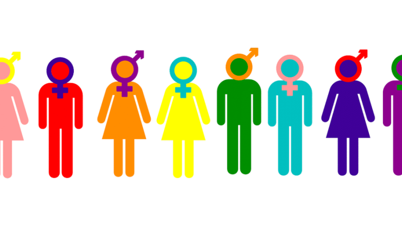There Is No Evidence That Rapid-Onset Gender Dysphoria Exists
